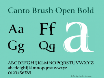 Canto Brush Open